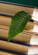 bks w leaf